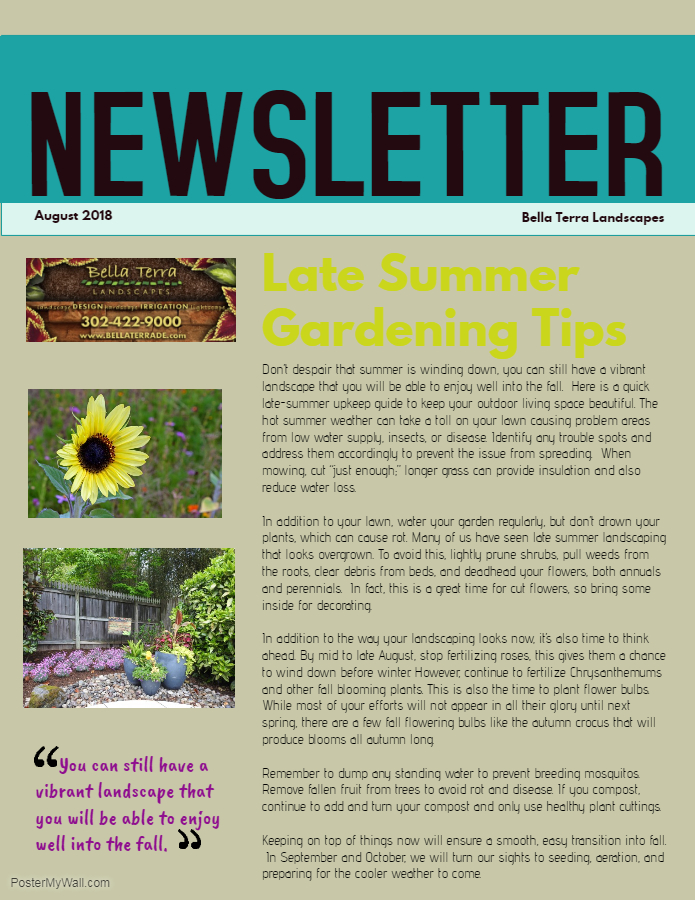 Late Summer Newsletter